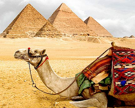 egypt the land of wonders Egypt land of wonders 955 likes 10 talking about this egypt is my birth country but its civilization is everyone's i invite you to visit it and.